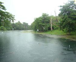 20090325033238-ariguanabo.jpg
