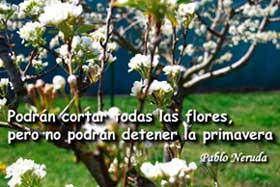 20150321140708-primavera.jpg