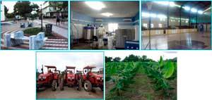 APUESTA POR LA AGRICULTURA, EL TURISMO Y LA CULTURA